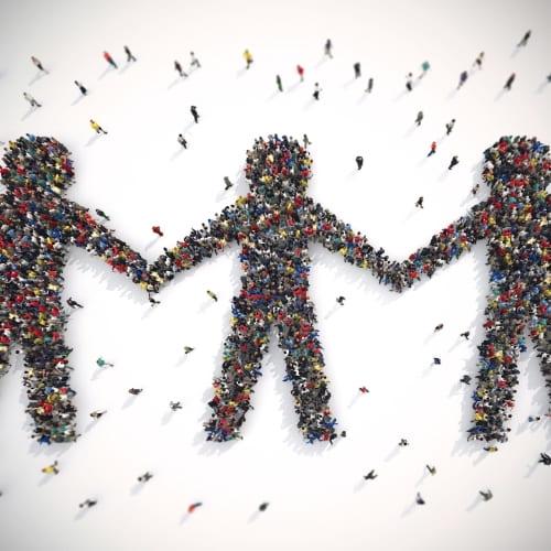 Projets pré-sélectionnés par ADN Solidarity